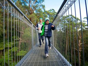 Get Back to Nature these July School Holidays - Accommodation Newcastle