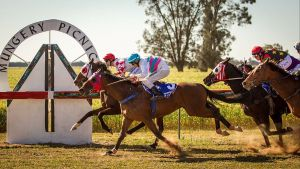 Mungery Picnic Races - Accommodation Newcastle